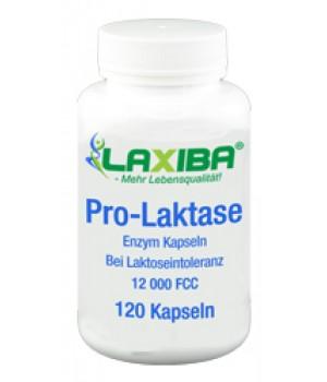 LAXIBA Pro-Laktase